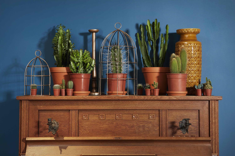 groen-styling-showroom-met-planten-de-woonindustrie